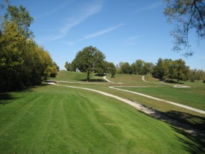 A green golf course with trees and paths